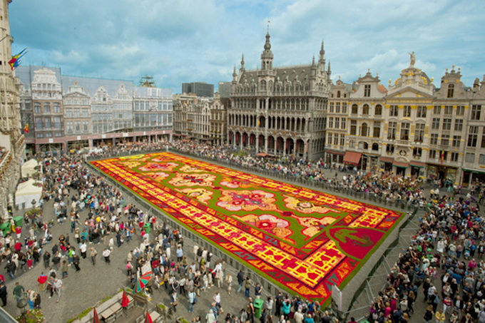 Brussels-Flower-Carpet-7.jpg