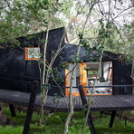 Quebrada Tree House в Чили