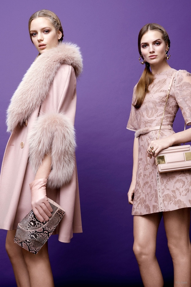 elie-saab-pre-fall-2015-photos22.jpg